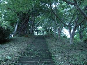 Hiraizumi_028