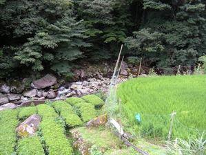 Toyamakkarisapporo_029